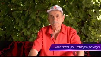 InoCell™ - relatarea dlui Vasile Neacsu, com Ciofrângeni, jud. Argeș